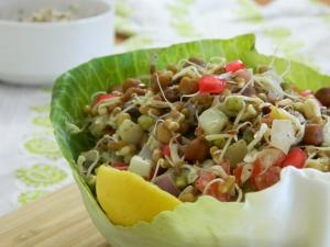 See Sprouts Chaat recipe on Food Connections By Madhulika