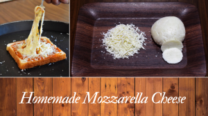 See Homemade Mozzarella Cheese Recipe recipe on Food Connections By Madhulika