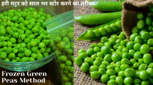See Frozen Green Peas Method recipe on Food Connections By Madhulika