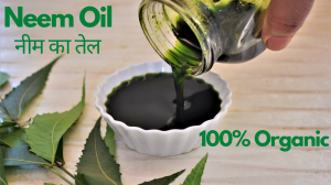 See Neem Oil recipe on Food Connections By Madhulika