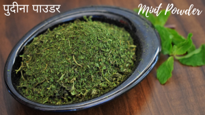 See Dry Mint Powder recipe on Food Connections By Madhulika